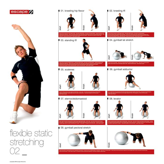 Male Static Stretching Chart :: Sports Supports | Mobility ...