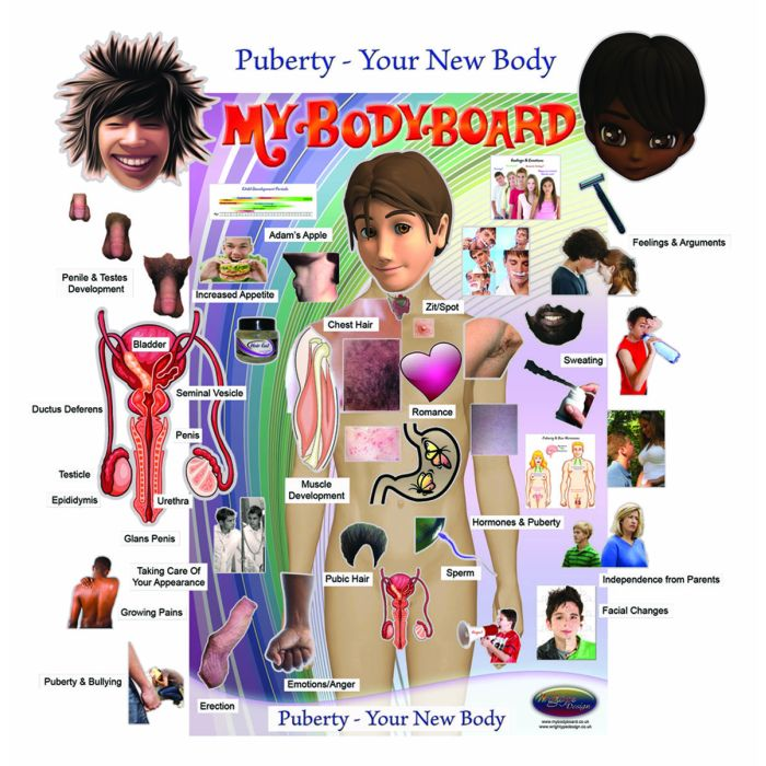 Puberty For Boys: You & Your New Body Magnetic Teaching Pack