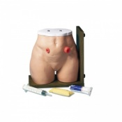 Ostomy Care Simulator Model