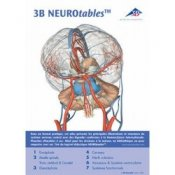 3B Neurotables In French