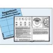 Manual For School Set With 175 Drawings - English