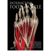Primal Pictures - Interactive Foot And Ankle English