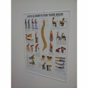 3D Back Care Poster