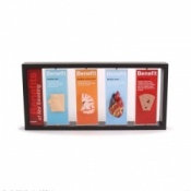 Benefits of Not Smoking 3D Display Tobacco Educational Display