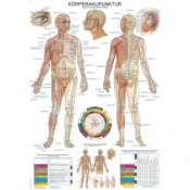 ''Body Acupuncture'' Educational Chart