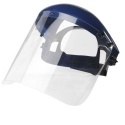 Bolle Browguard with Visor Faceshield