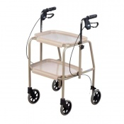 Days Walker Trolley
