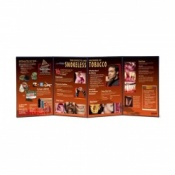 Effects and Hazards of Smokeless Tobacco Folding Display Educational Aid