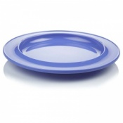 Find Dining 10-Inch Dining Plate
