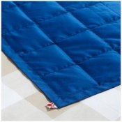 Wipe Clean Fire Retardant Weighted Lap Pad
