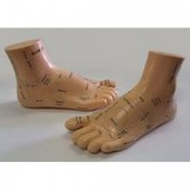 Soft Vinyl Foot Acupuncture Models