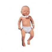 Infant Tracheostomy Model