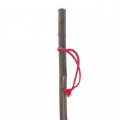 Junior Hiker Children's Hiking Stick