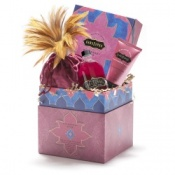 Kama Sutra Rasberry Kiss Treasure Trove Gift Set