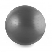 Live on the Edge Swiss Exercise Ball