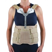 Lumbar Brace With Sternal Extension