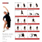 Male Static Stretching Chart