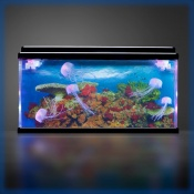 PlayLearn Large Jellyfish Tank Water Feature