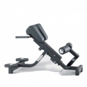 Technogym Pure Strength Lower Back Bench