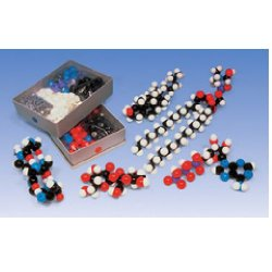 Biochemistry Teacher Set - Compact Models