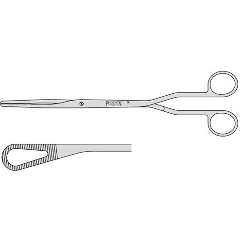 McClintock Ovum Forceps Curved With A Screw Joint 240mm Curved