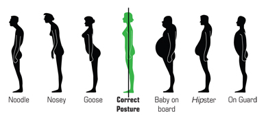 Posture Diagram for Correct Posture