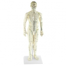 Soft Vinyl Male Meridian Acupuncture Model