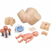 Obstetric Trainer Model