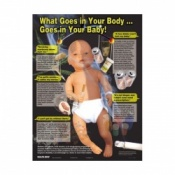 What Goes In Your Body Goes In Your Baby Pregnancy Educational Chart