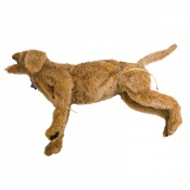 Critical Care Jerry Full-Sized Realistic Canine Dog Manikin