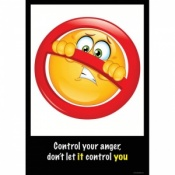 My Angry Face Consequences of Anger Posters (Set of 10)