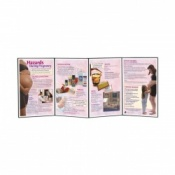 Hazards During Pregnancy Folding Display Educational Aid