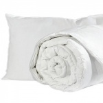 Washable Hollowfibre Pillow