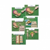 Labour and Birth Intervention Chart (Set of 6)