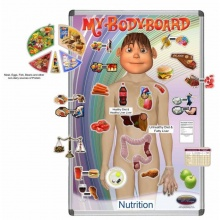Teaching Nutrition Magnetic Pack