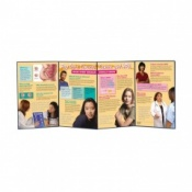 Pap Tests Cervical Cancer and HPV Folding Display