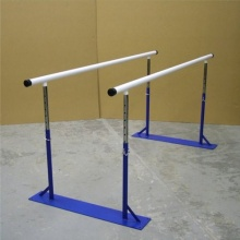 Remedial Parallel Bars