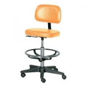 Practitioner Chair with Foot Ring