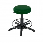 Sunflower Medical Green Gas-Lift Stool with Foot Ring and Glides