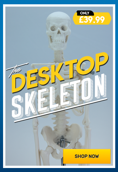 Desktop Mini Skeleton – Shop Now!